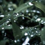 フランス発!雨の日安心♪機能的かつスタイリッシュさを伝統に持つ【エーグル(AIGLE)】をご紹介♪